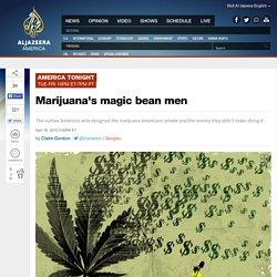 The magic bean men