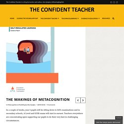 The Makings of Metacognition