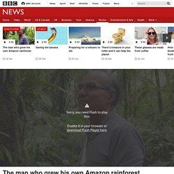 The man who grew his own Amazon rainforest