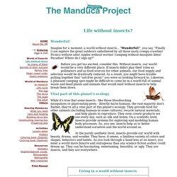The Manduca Project