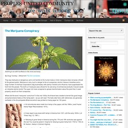 The Marijuana Conspiracy