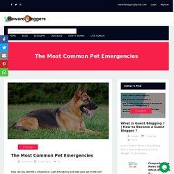 The Most Common Pet Emergencies