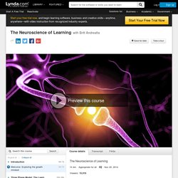 The Neuroscience of Learning