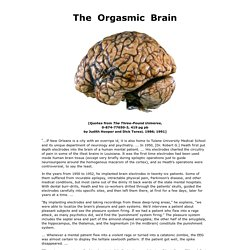 The Orgasmic Brain