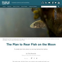 The Plan to Rear Fish on the Moon