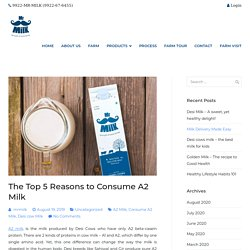 The Top 5 Reasons to Consume A2 Milk