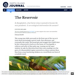 EARTH ISLAND JOURNAL 28/02/19 The Reservoir - In Bangladesh, a bat-borne virus is poised to become the next pandemic. Is an ecological intervention the answer?
