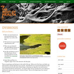The Root of Health - Dysbiosis