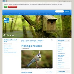 Advice: Making a nestbox