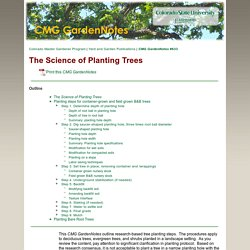 The Science of Planting Trees