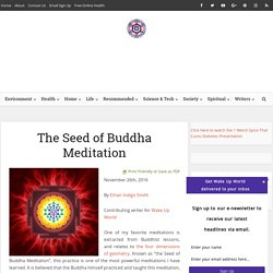 The Seed of Buddha Meditation