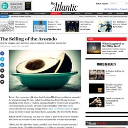 The Selling of the Avocado