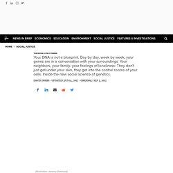 The Social Life of Genes
