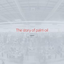 The story of palm oil