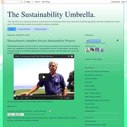 The Sustainability Umbrella.