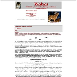 The Wolves of North America