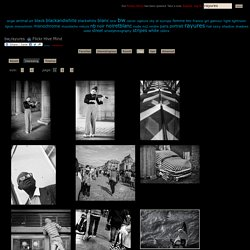 The World's Best Photos of bw and rayures