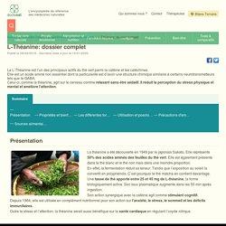 L-théanine – Dossier complet fait par une naturopathe – Doctonat