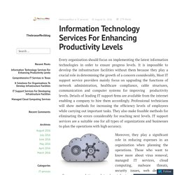 Information Technology Services For Enhancing Productivity Levels