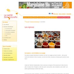 Dossier thématique: les épices Définition, propriétés et utilisation