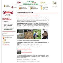 Thématiques de recherche - Le plant français de pomme de terre