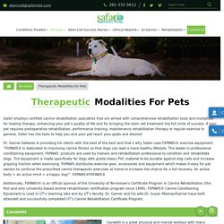Therapeutic laser modalities for the dog at a Cheap price