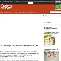 Le moringa, couteau suisse thérapeutique - Découvrir - Plantes & santé