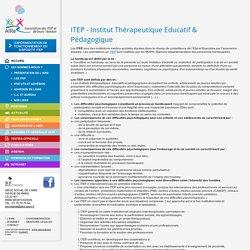 ITEP - Institut Thérapeutique Educatif & Pédagogique