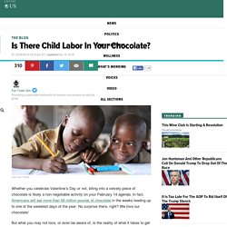 Is There Child Labor In Your Chocolate?