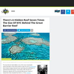 There's A Hidden Reef Seven Times The Size Of NYC Behind The Great Barrier Reef