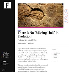 "No. There is No ""Missing Link"" in Human Evolution."