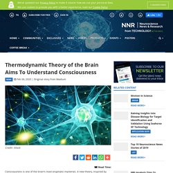 Thermodynamic Theory of the Brain Aims To Understand Consciousness