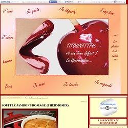 Soufflé jambon fromage (thermomix) - LES RECETTES DE TITOUNETTE45