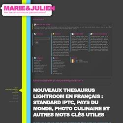 Nouveaux thesaurus lightroom en français : Standard IPTC, pays du Monde, photo culinaire et autres mots clés utiles