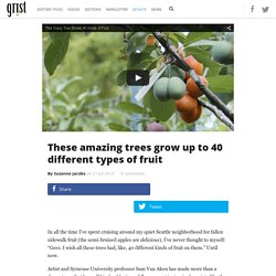 These amazing trees grow up to 40 different types of fruit