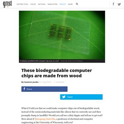 These biodegradable computer chips are made from wood