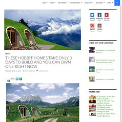 These Hobbit-Homes Take Only 3 Days To Build and You Can Own One Right Now