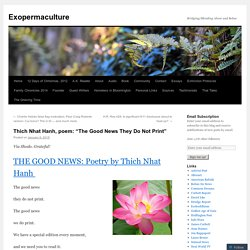 "Thich Nhat Hanh, poem: ""The Good News They Do Not Print"""