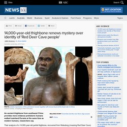 14,000-year-old thighbone renews mystery over identity of 'Red Deer Cave people' - Science