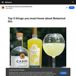 Top 5 things you must know about Botanical Gin on Behance