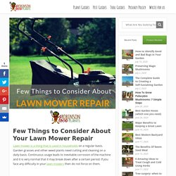 Few Things to Consider About Your Lawn Mower Repair - Robinson Love Plants!