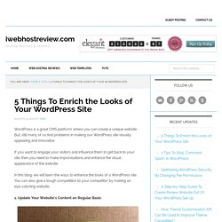 5 Things To Enrich the Looks of Your WordPress Site