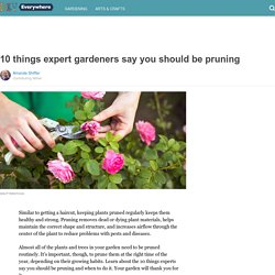 10 things expert gardeners say you should be pruning