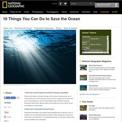 10 Things You Can Do to Save the Ocean