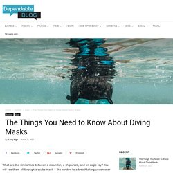 The Things You Need to Know About Diving Masks