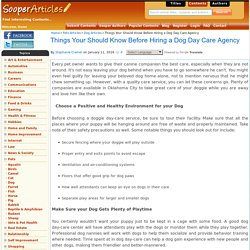 Things Your Should Know Before Hiring a Dog Day Care Agency