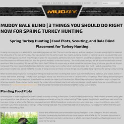3 Things You Should Do Right Now for Spring Turkey Hunting - Muddy