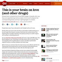 This is your brain on love (and other drugs)