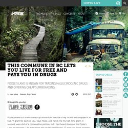 This commune in BC lets you live for free and pays you in drugs