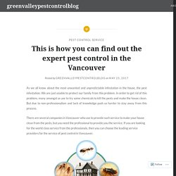 This is how you can find out the expert pest control in the Vancouver